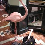 SFX Flamingo Animatronik T-mobile
