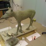 Wolf sculpting animatronic