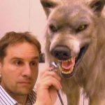 Animatronic Wolf