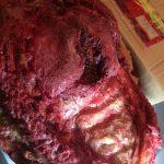 Autopsy , Rechtsmedizin geöffneter Brustkorb zum auflegen auf den Schauspieler aus Silikon , SFX Make-up