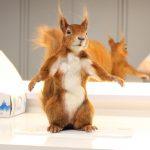 Bewegliche Eichhörnchen Dummie SFX Puppe Film