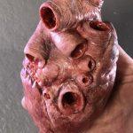 Menschliches Human Heart Herz Fake Anatomie movieSFX Dummie Silikon Gummi original Size Filmrequisiten Kino TV