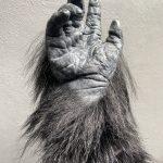 Gorilla Hand, Arm Handschuh SFX Filmeffekte movieSFX Silikon Spezialeffekte